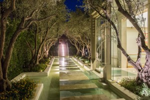 guests-enter-through-a-floating-glass-floor-walkway-lined-with-olive-trees