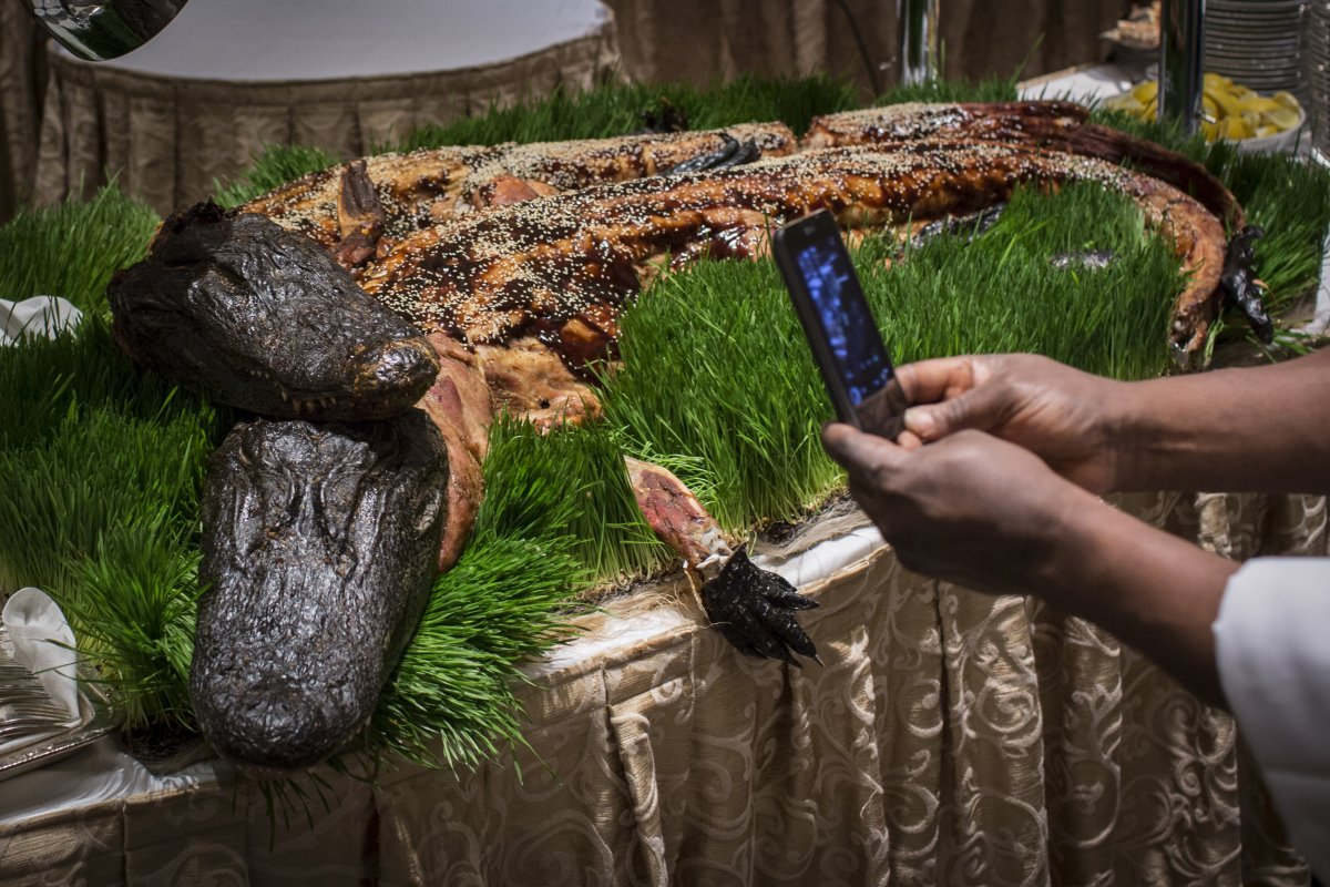 strange-delicacies-arent-exclusive-to-foreign-lands-these-whole-cooked-alligators-were-served-at-the-110th-explorers-club-annual-dinner-held-at-the-waldorf-astoria-in-new-york-city