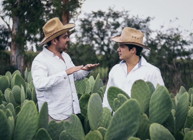 Skvelý nápad pochádza z hláv Mexičanov