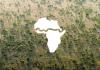 afrika, stromy, les